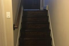 wood floors dino
